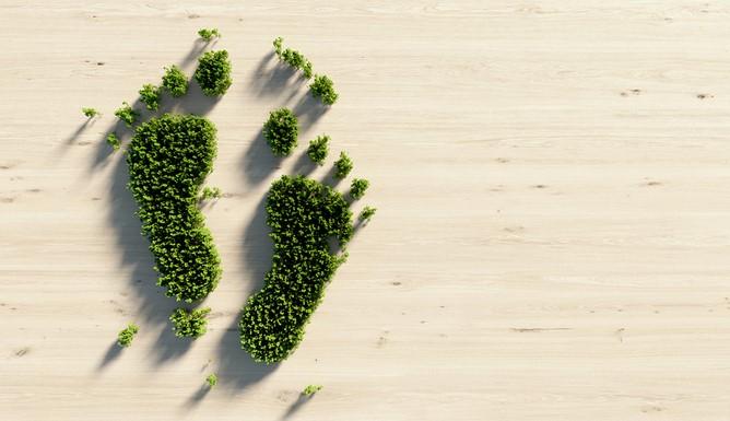 5 Simple Ways To Reduce Carbon Footprint